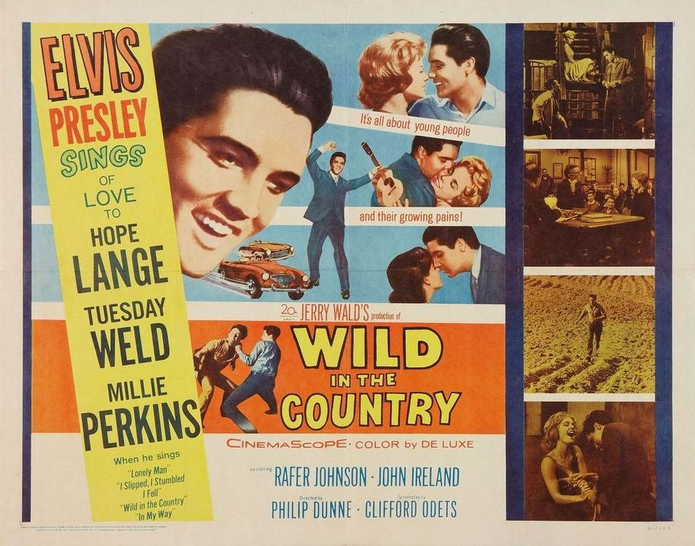07 Wild in the Country - USA half-sheet