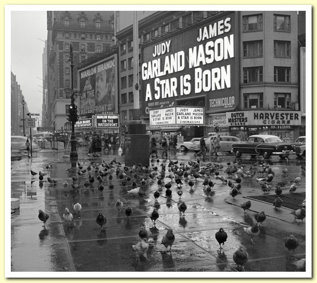 1954 11 November Frank Oscar Larson
