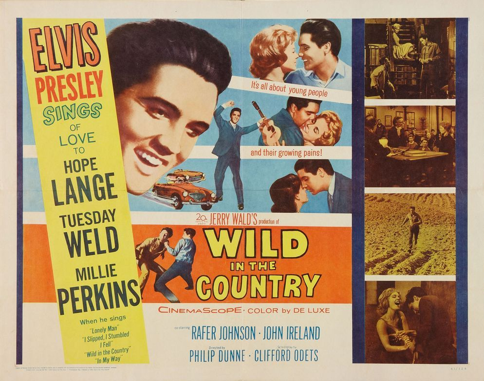 Wild in the Country - USA half-sheet