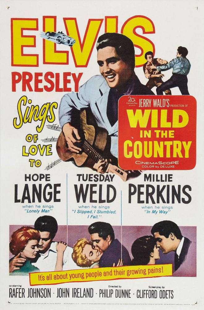 Wild In The Country - USA 1-sheet