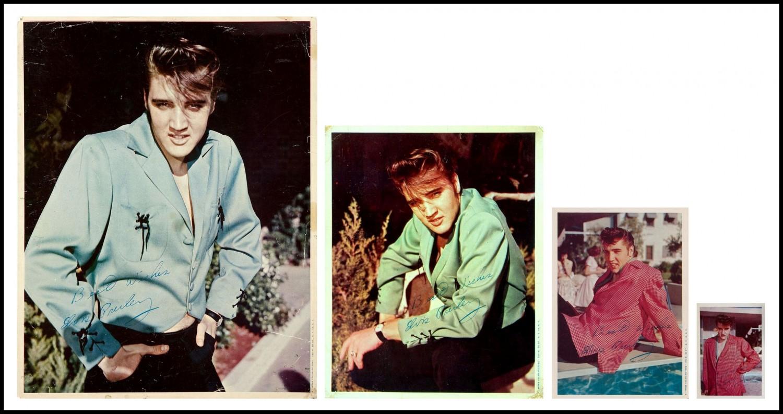 Moss Photos collage of all 4 photos